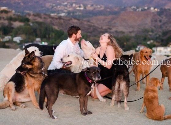 Hillarious: Man Proposes To Girlfriend With 16 Dogs In Attendance (Photos)